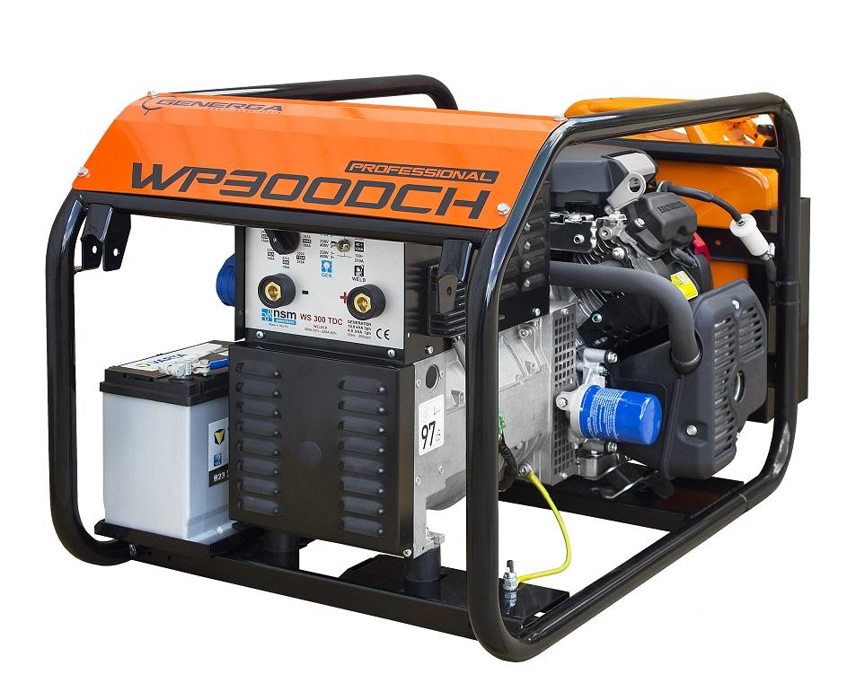 Engine driven welder WP300DCH